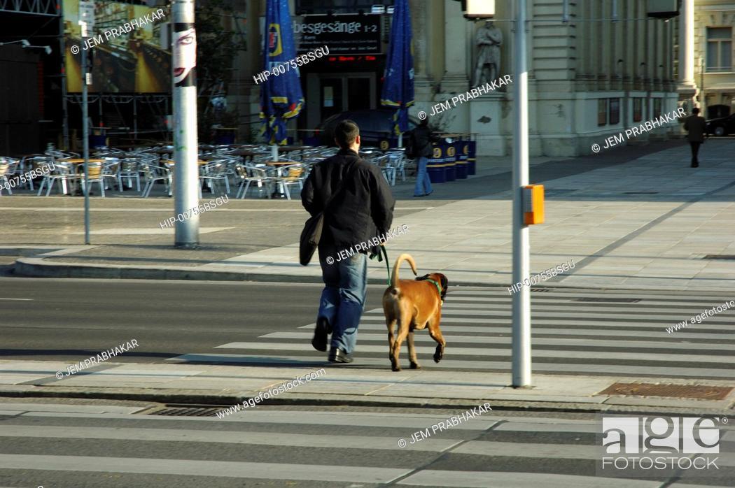 Imagen: A MAN WALKING HIS DOG IN VIENNA, AUSTRIA.