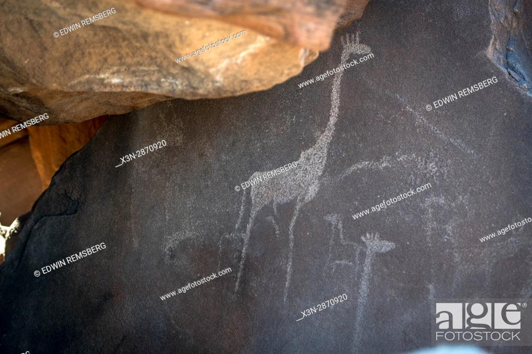 Imagen: Rock carvings made by ancient tribes of Damaraland in Twyfelfontein, located Namibia, Africa.