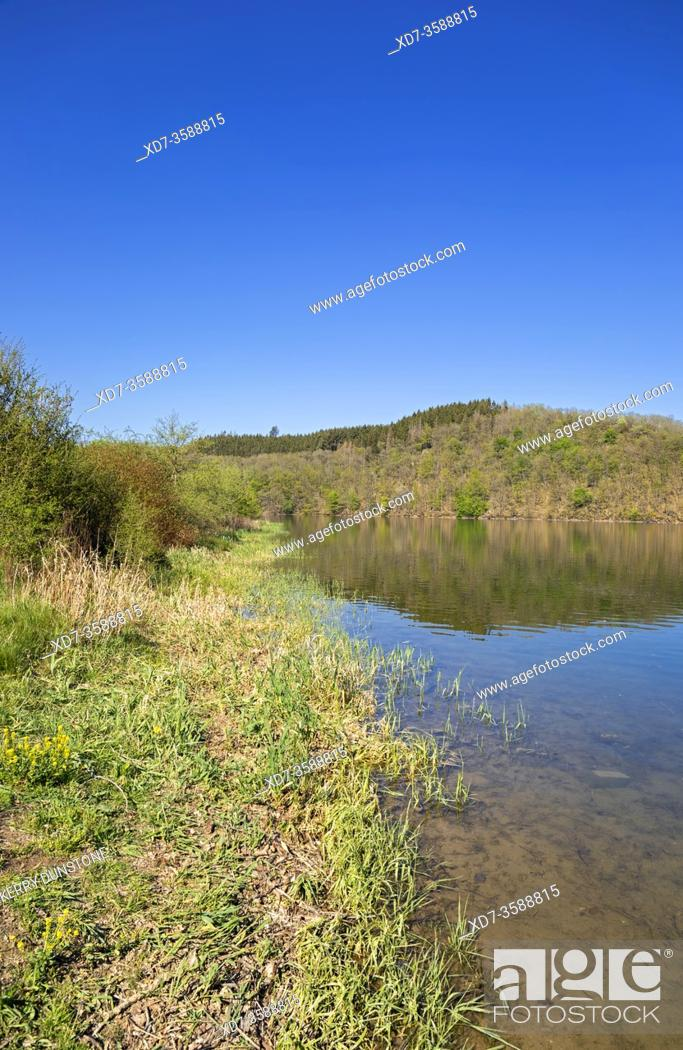 Stock Photo: Europe, Luxembourg, Insenborn, Shores of Lac Sure.