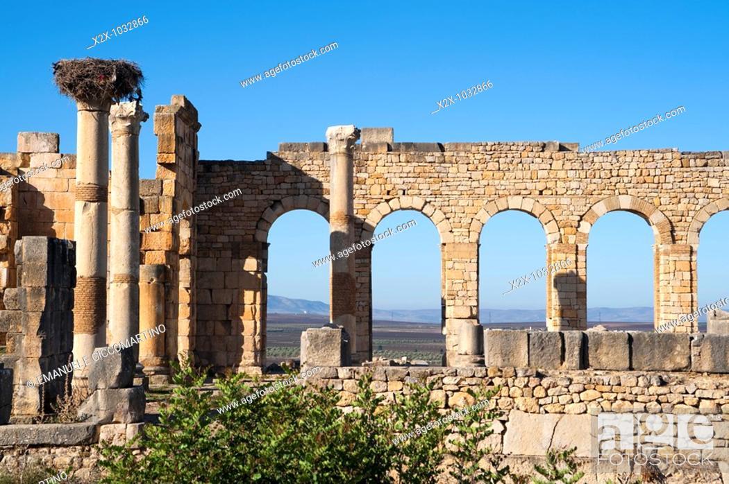 Stock Photo: Volubilis, Morocco.