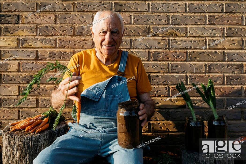 Stock Photo: Smiling senior man with glass jars of soil and fresh carrots looking at camera.