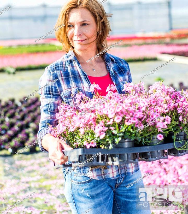 Stock Photo: Woman in nursery holding tray with flowers.