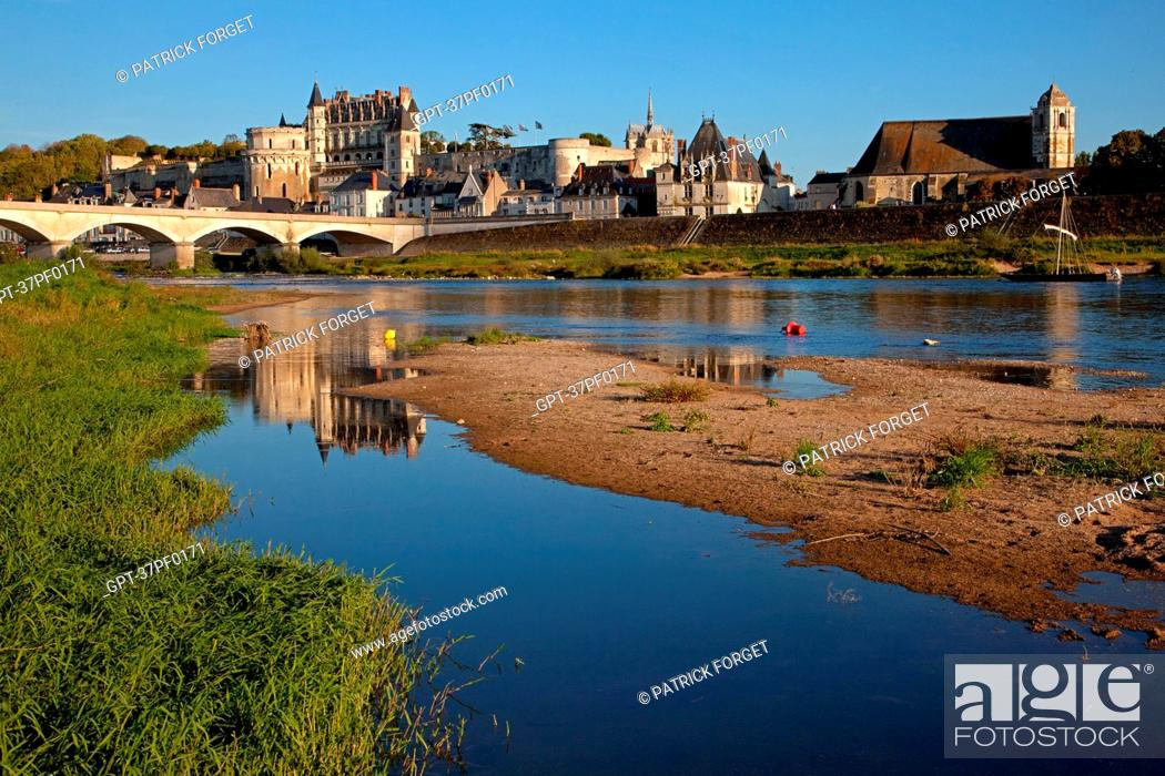 Stock Photo: THE BANKS OF THE LOIRE SEEN FROM LA CROIX SAINT-JEAN ISLAND, VIEW OF THE SAINT FLORENTIN CHURCH, THE ROYAL CHATEAU AND THE TOWN OF AMBOISE, INDRE-ET-LOIRE 37.