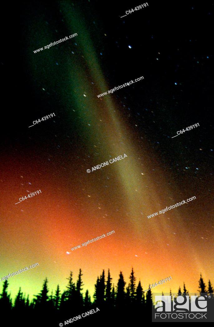 Stock Photo: Aurora Borealis or Nothern Lights. Denali National Park. Alaska. USA.