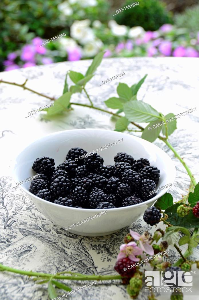 Stock Photo: blackberries in a white bowl with tendril.