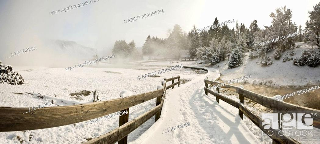 Stock Photo: Yellowstone Lake area in winter, Yellowstone National Park, Wyoming, USA.
