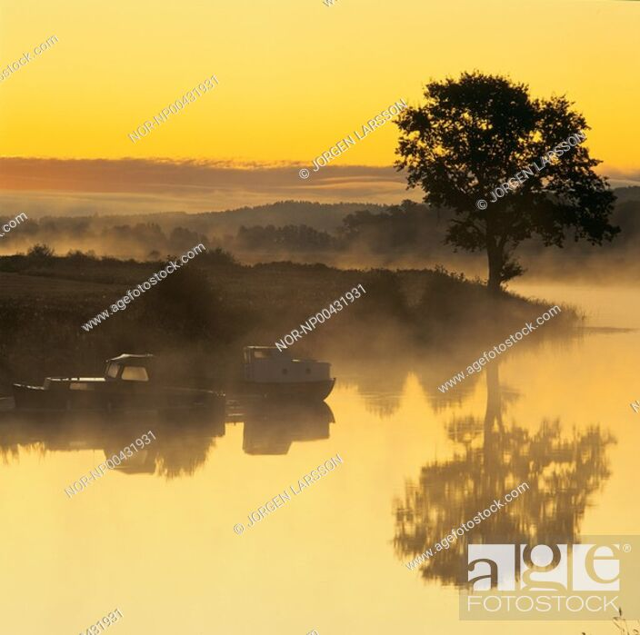 Stock Photo: A tree and boats reflecting in the lake at sunrise.