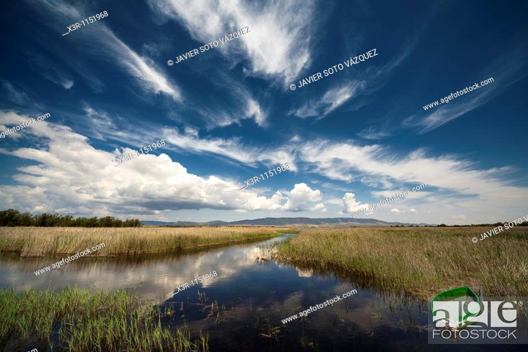 Stock Photo: Tablas de Daimiel National Park, protected lagoons in southern Spain, home to many migratory birds. Ciudad Real province, Spain.