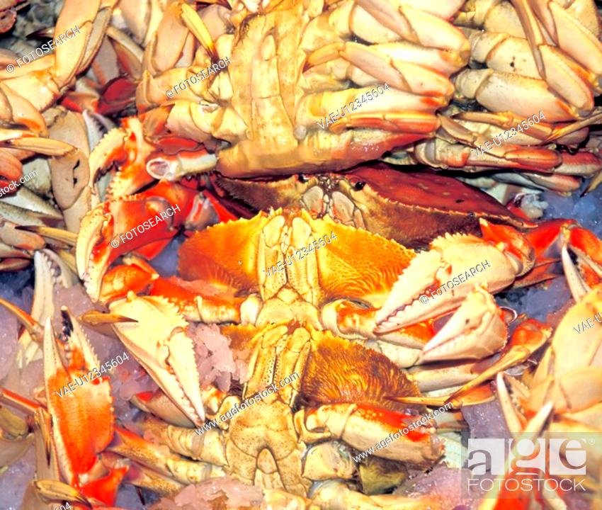Stock Photo: boiled, claws, crabs, display, food, fresh, gumbo.
