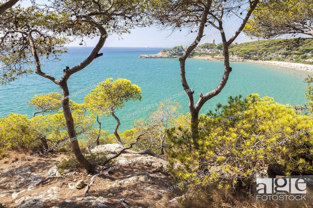 Stock Photo: Route between Tamarit and Altafulla, Altafulla, Tarragones, Tarragona, Spain.