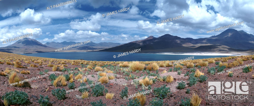 Stock Photo: Chile, landscape with lake and mountains, panoramic view.