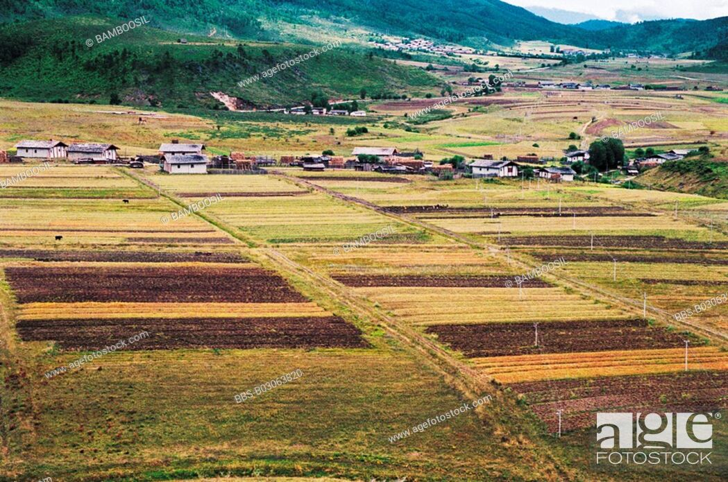 Imagen: Villages in Shangri-la, Shangri-la County, Diqing Prefecture, Yunnan Province, People's Republic of China.