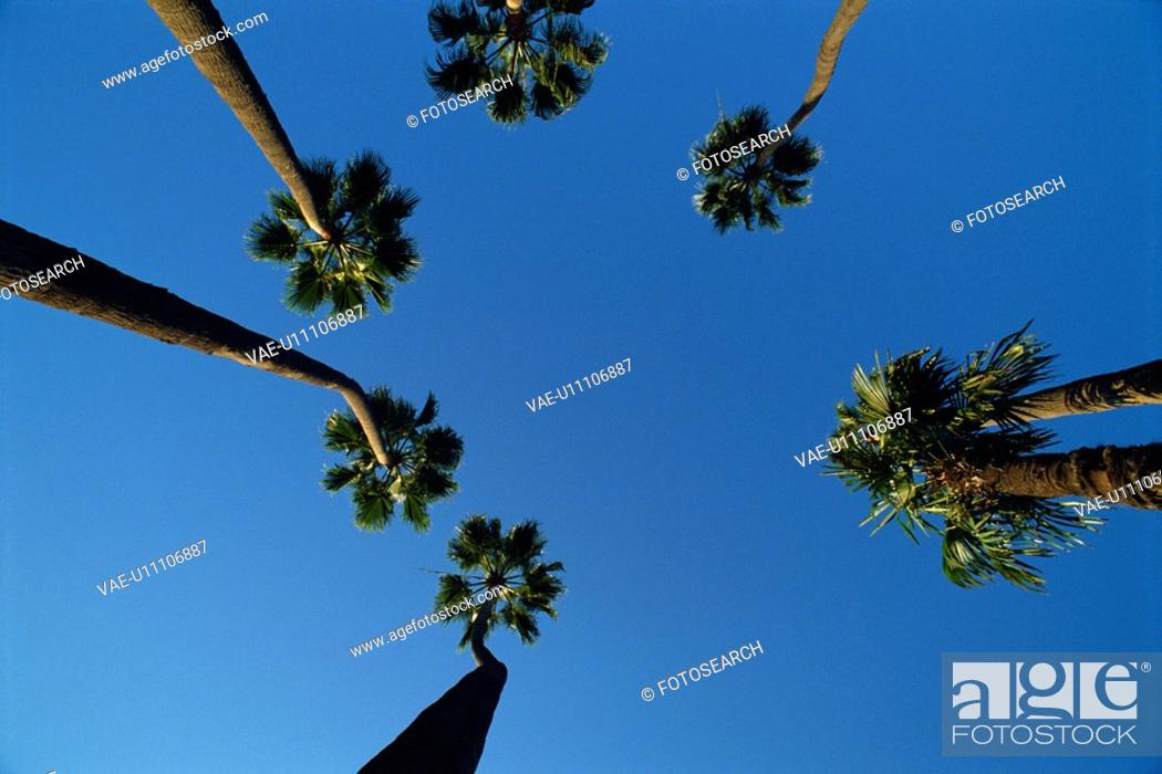 Stock Photo: The Sky In Los Angeles.