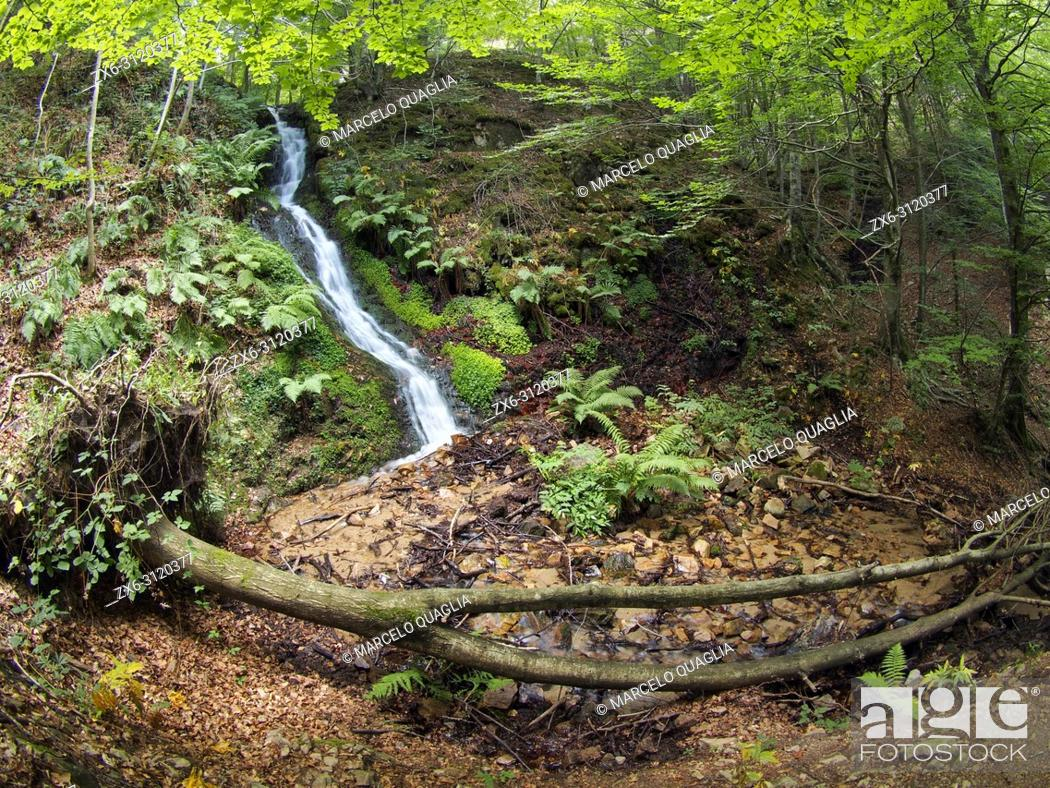 Stock Photo: Beech forest (Fagus sylvatica) and Marianegre stream waterfalls. One of the several subsequent cascades along the stream.