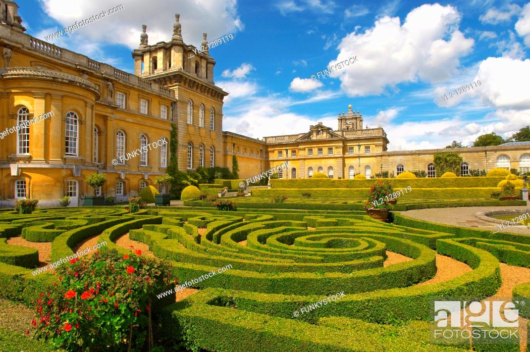 Photo de stock: Blenheim Palace Italian Garden with topiary maize - England.