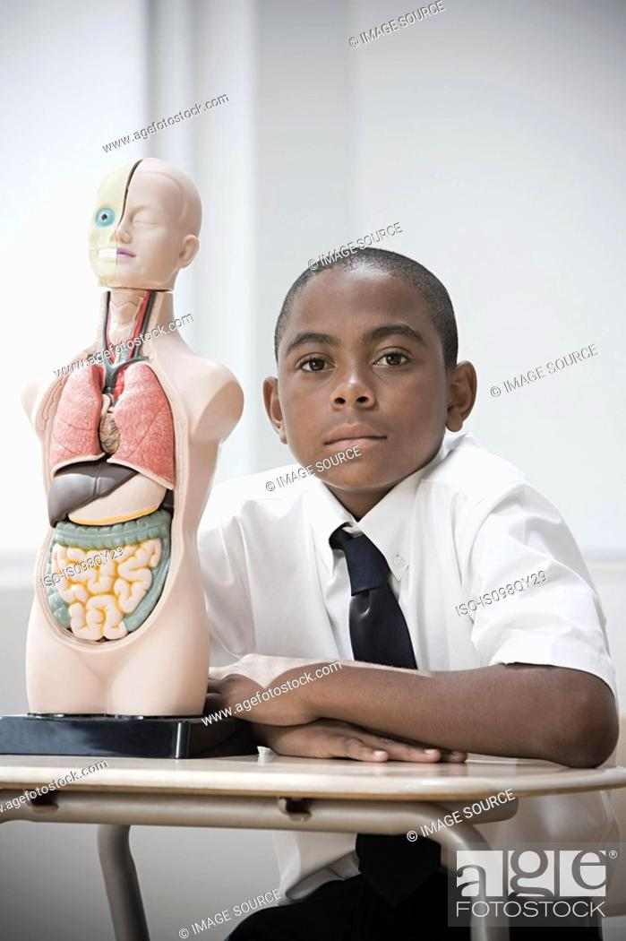 Stock Photo: Boy with anatomical model.