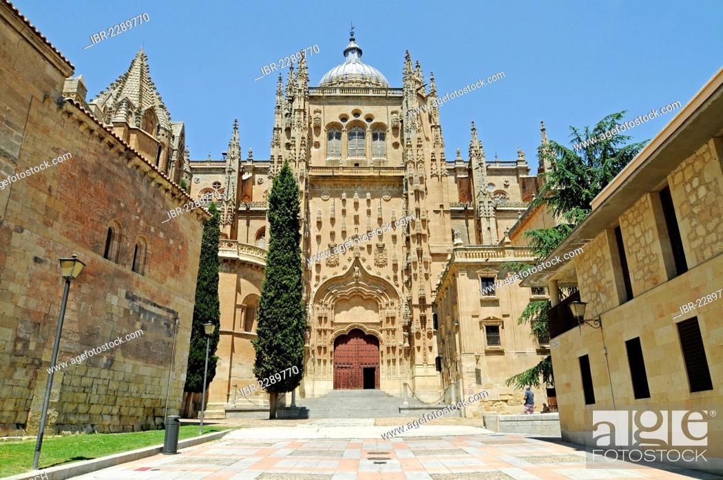 Imagen: Old Cathedral, Salamanca, Castile-Leon, Spain, Europe, PublicGround.