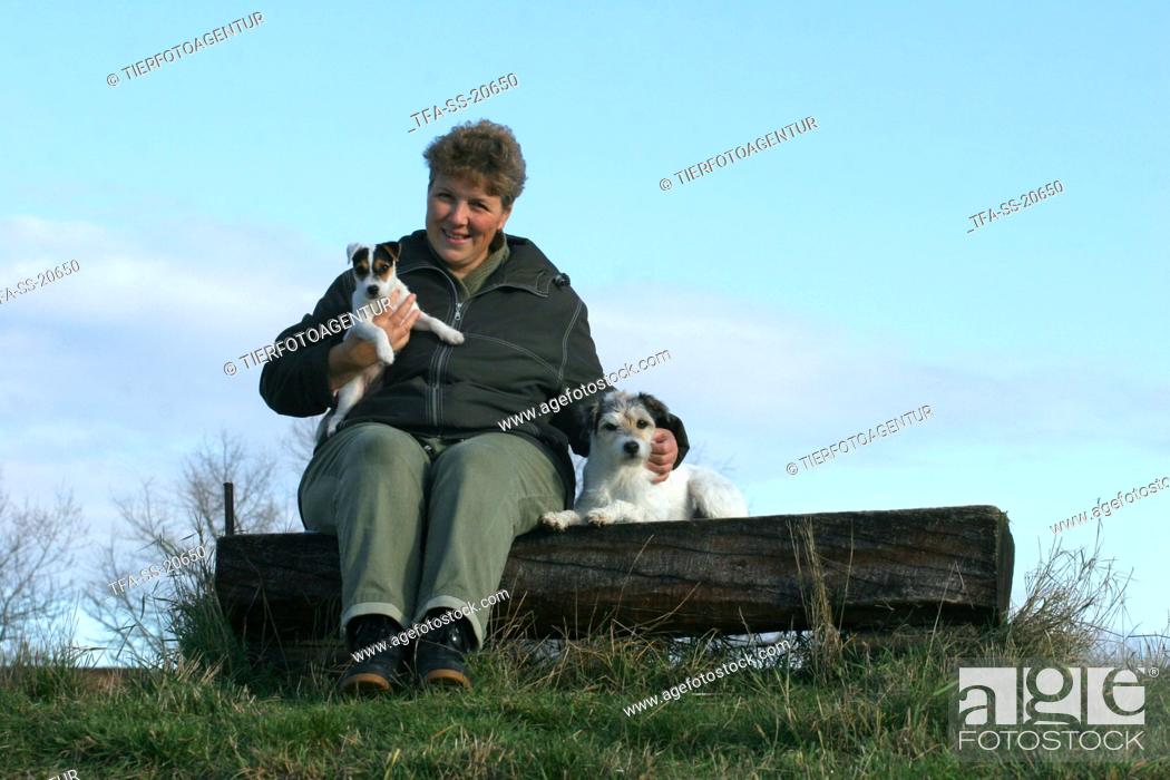 Stock Photo: woman with Parson Russell Terrier.