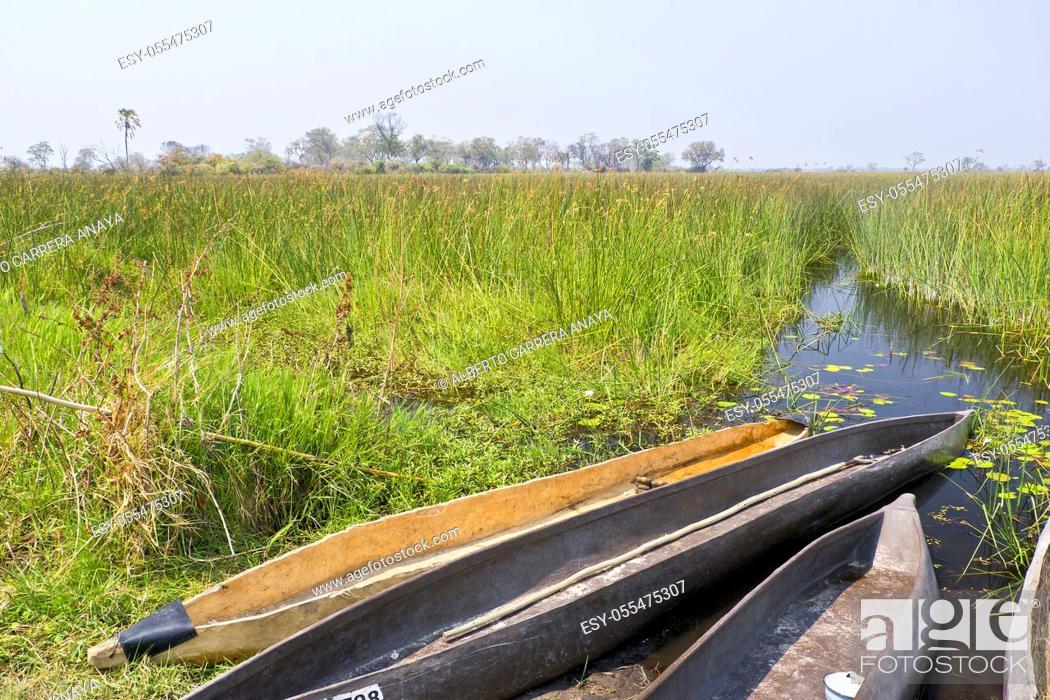 Imagen: Mokoro, Dugout canoes, Traditional boat, Okavango Delta, Botswana, Africa.