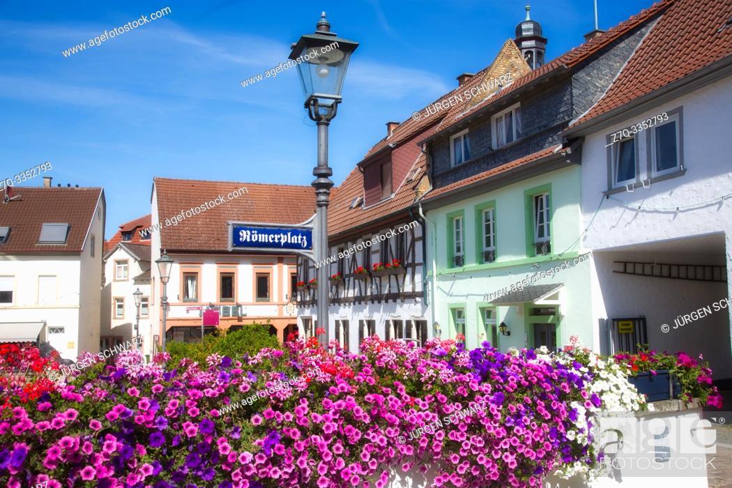 Photo de stock: Petunia at Roemerplatz in Kirchheimbolanden, Rheinland-Pfalz, Deutschland.