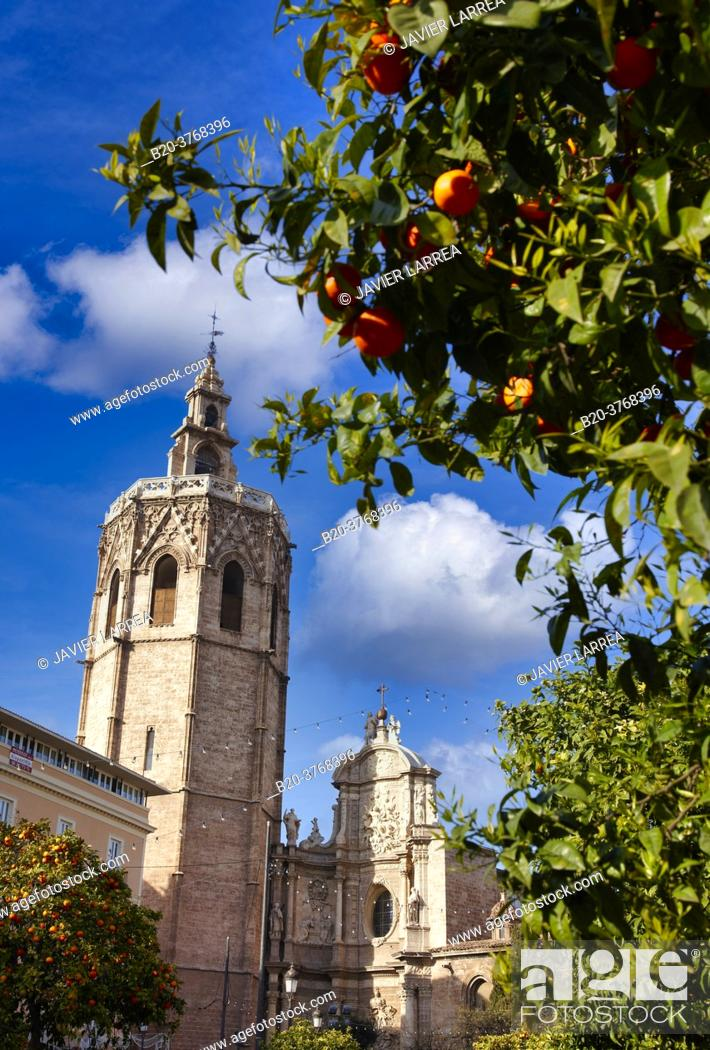 Imagen: Catedral y Torre del Miquelete, Plaza de la reina, Valencia, Comunidad Valenciana, España.