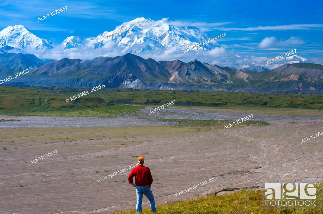 Stock Photo: A man views Mt. McKinley from a hillside near the Eielson Visitor Center in Denali National Park, Interior Alaska, Summer.