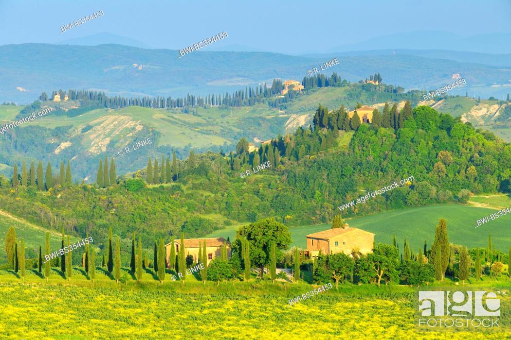 Stock Photo: Tuscany Countryside in Spring, Asciano, Siena, Grete Senesi, Italy, Tuscany.