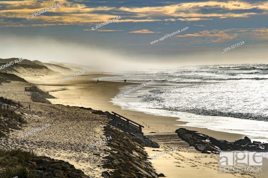 Stock Photo: Beach Grand Crohot. Lège-Cap-Ferret, Gironde. Aquitaine region. France Europe.