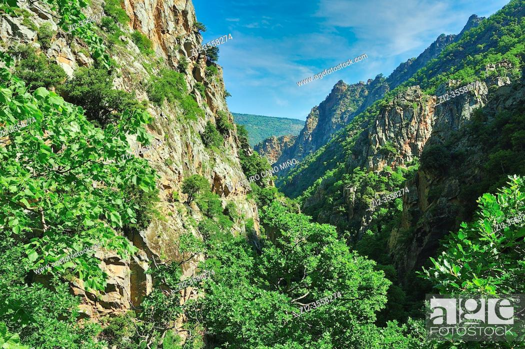 Stock Photo: A hiker in the Gorges of Carança. The Catalan Pyrenees Regional Natural Park in the French Pyrenees. Thuès-Entre-Valls town, Pyrénées-Orientales department.