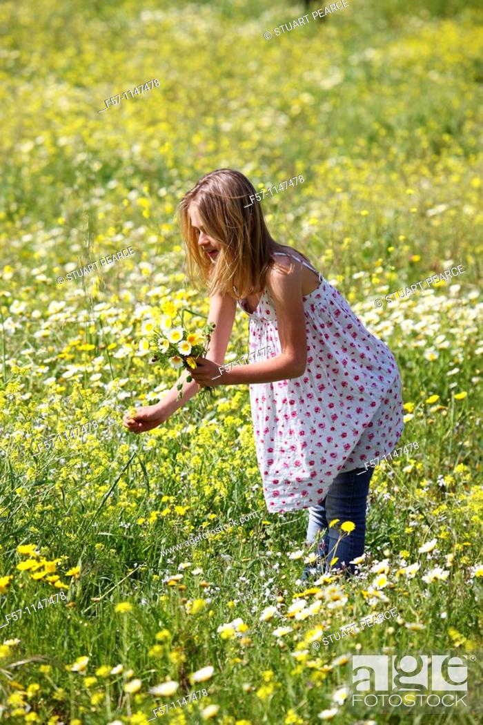 Stock Photo: Young girl picking flowers.