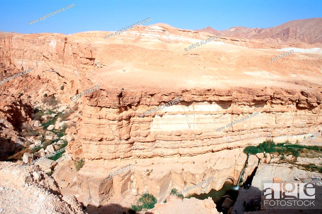 Stock Photo: Tunisia - The South - Chott el Jerid Region - Montain Oasis - Tozeur Region - Tamerza Oasis - The Grand Cascade.