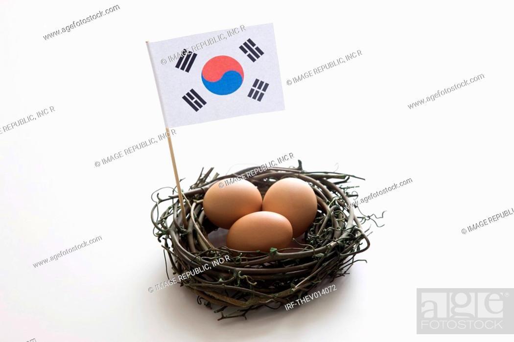 Stock Photo: Korean flag, Taegeukgi and nest.