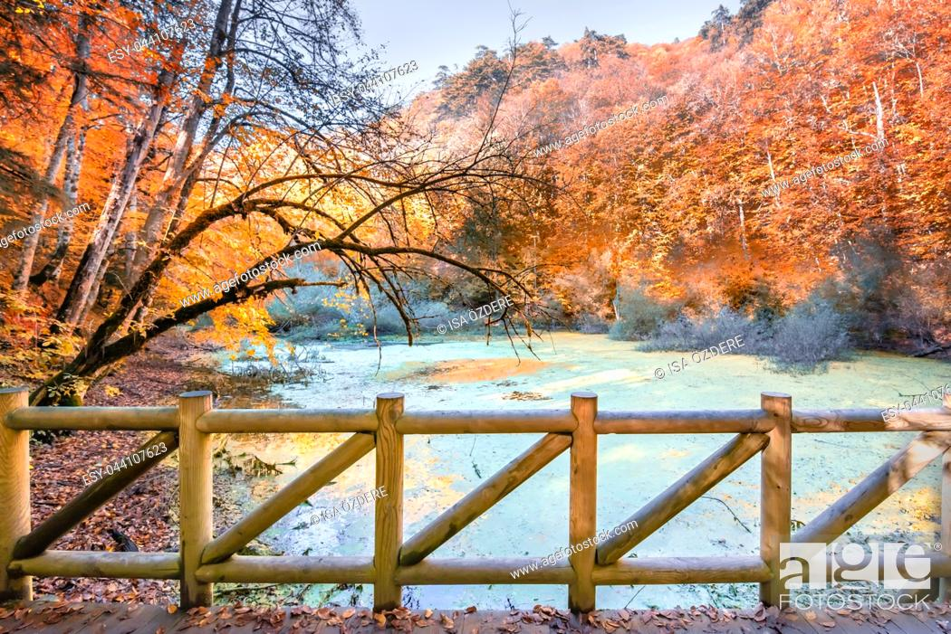 Stock Photo: Autumn color of pond at Yedigoller Nature park located in Bolu, Turkey with wooden handrails bridge on foreground. Autumn concept.