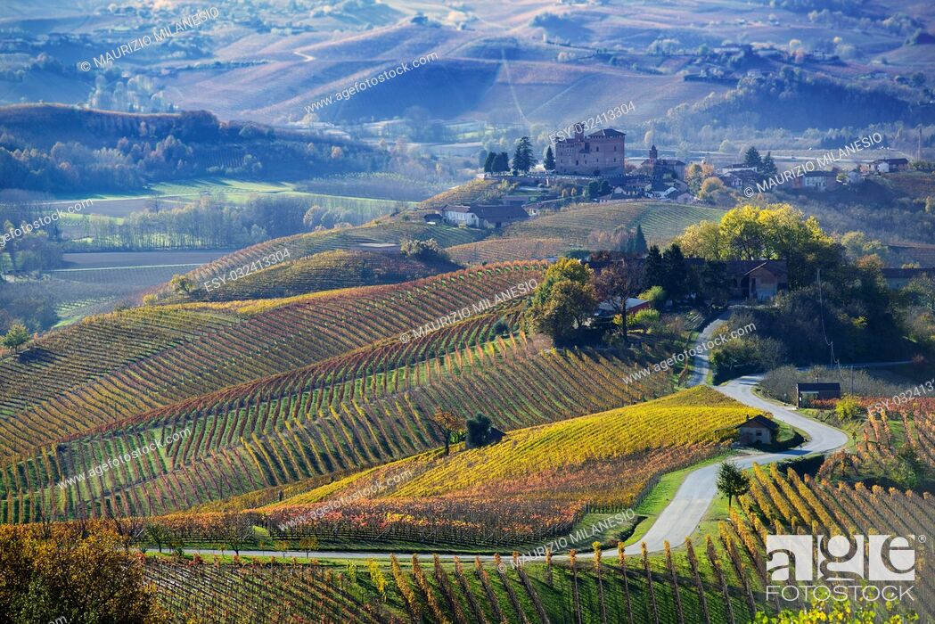 Stock Photo: Road between the hills of Langa Piemonte Italy, at the bottom the castle of Grinzane cavour.