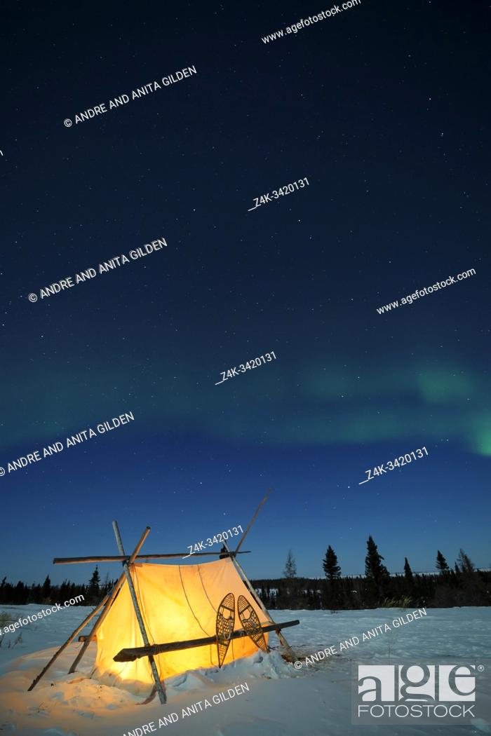 Imagen: Trappers tent and nightsky with Aurora borealis, Northern lights, Wapusk National Park, Manitoba, Canada.
