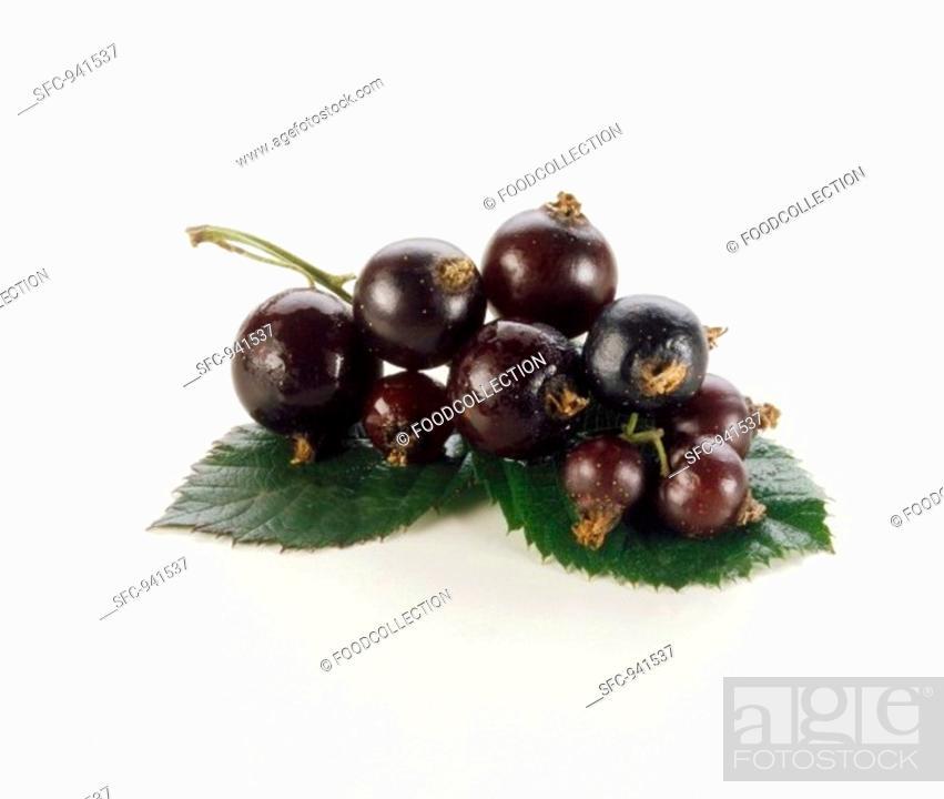 Stock Photo: Blackcurrants on white background.