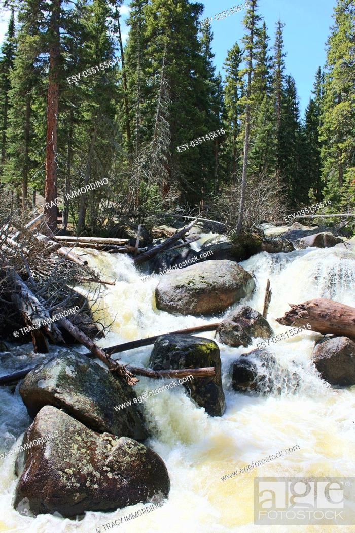 Stock Photo: The rushing water of Copeland Falls flowing over boulders in the Rocky Mountain National Park, on the Wild Basin Trail, in Colorado, USA.