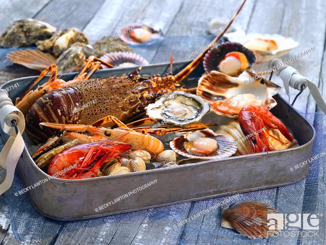 Stock Photo: mariscos / seafood.