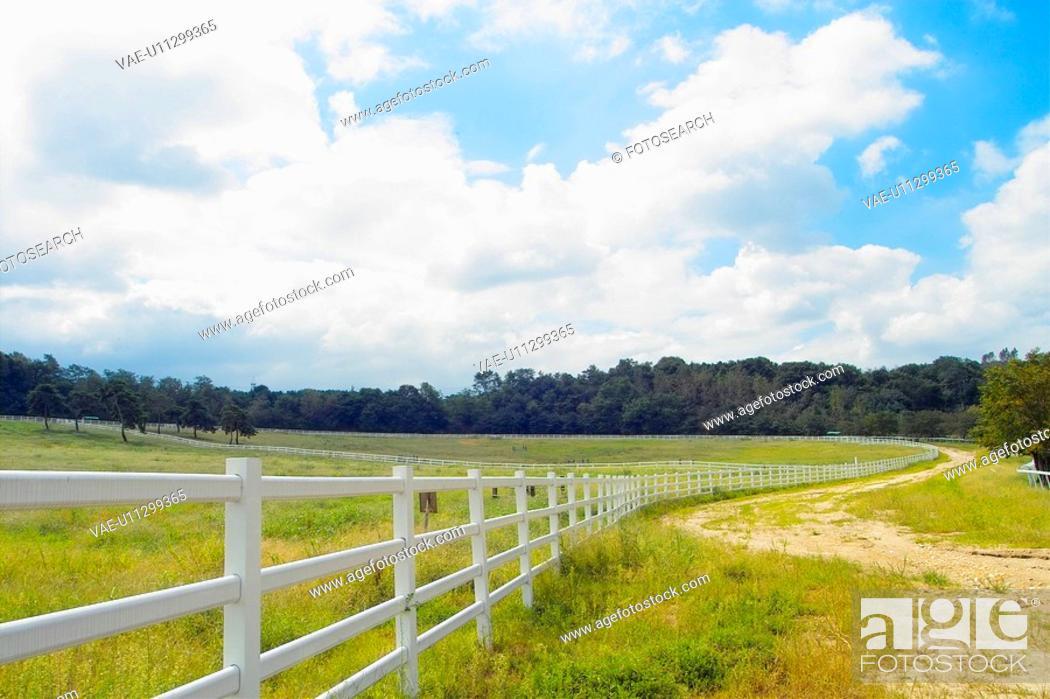 Stock Photo: landscape, sky, scenery, ranch, field, cloud.