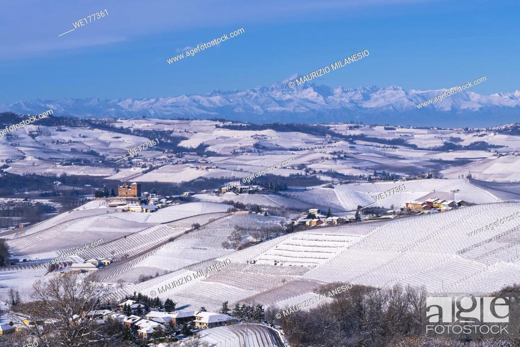 Stock Photo: Grinzane Cavour, Piedmont, Italy, Hilly landscape on the vineyards of the Langhe in the Unesco territory of Italy are visible the Castle of Grinzane Cavour and.
