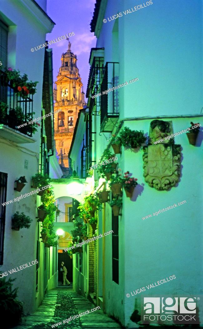 Stock Photo: Córdoba Andalusia  Spain: Calleja de las Flores, in the background Bell tower or minaret of the mosque-cathedral.