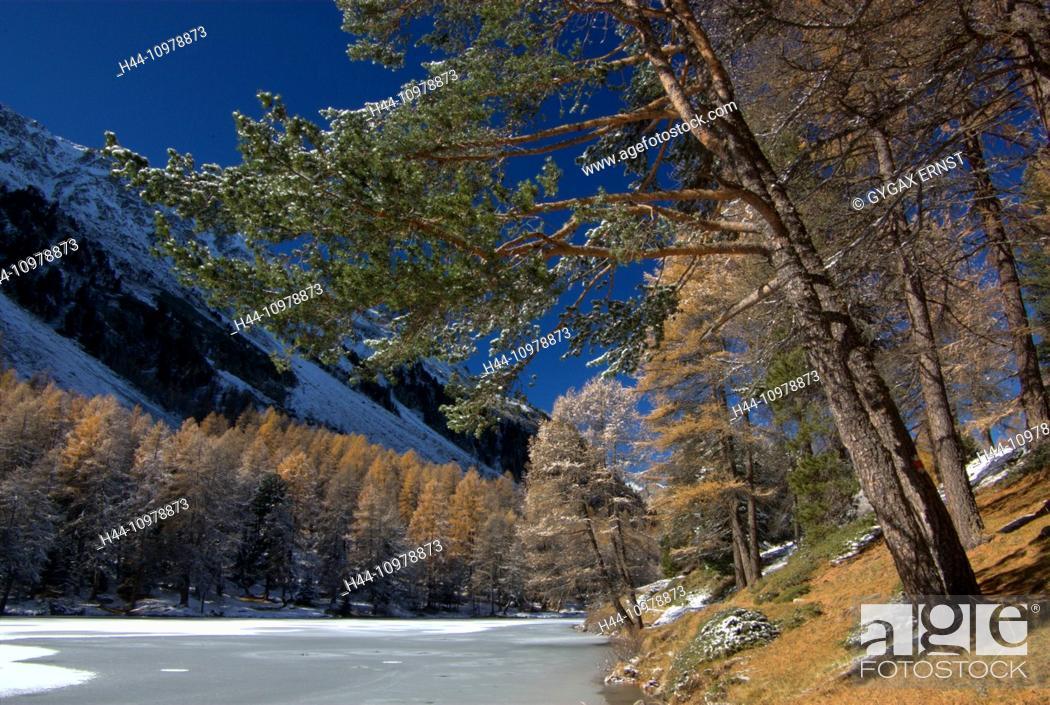 Stock Photo: Switzerland, Europe, Graubünden, Grisons, Alps, Albula, Landscape, Mountain, pass, autumn, lake Palpuognasee, lake, ice,.