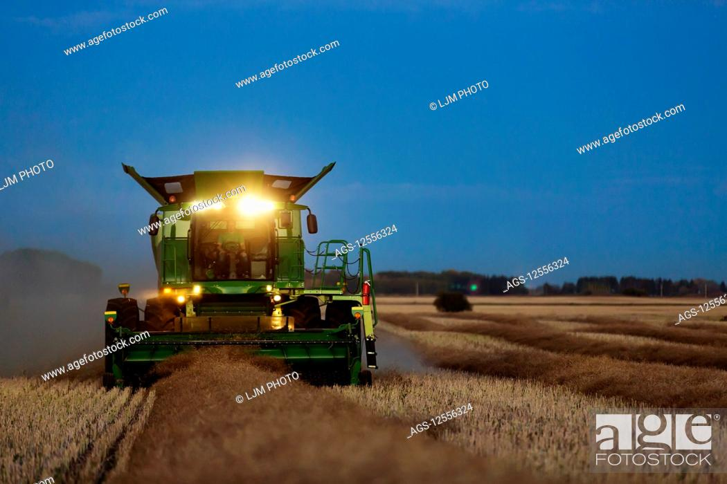 Stock Photo: A combine with its lights on harvesting canola after sunset; Legal, Alberta, Canada.