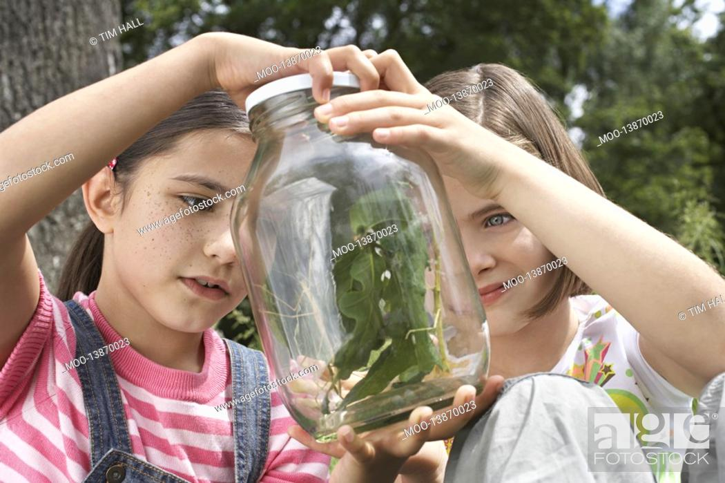 Stock Photo: Two girls 7-9 examining stick insects in jar outdoors.