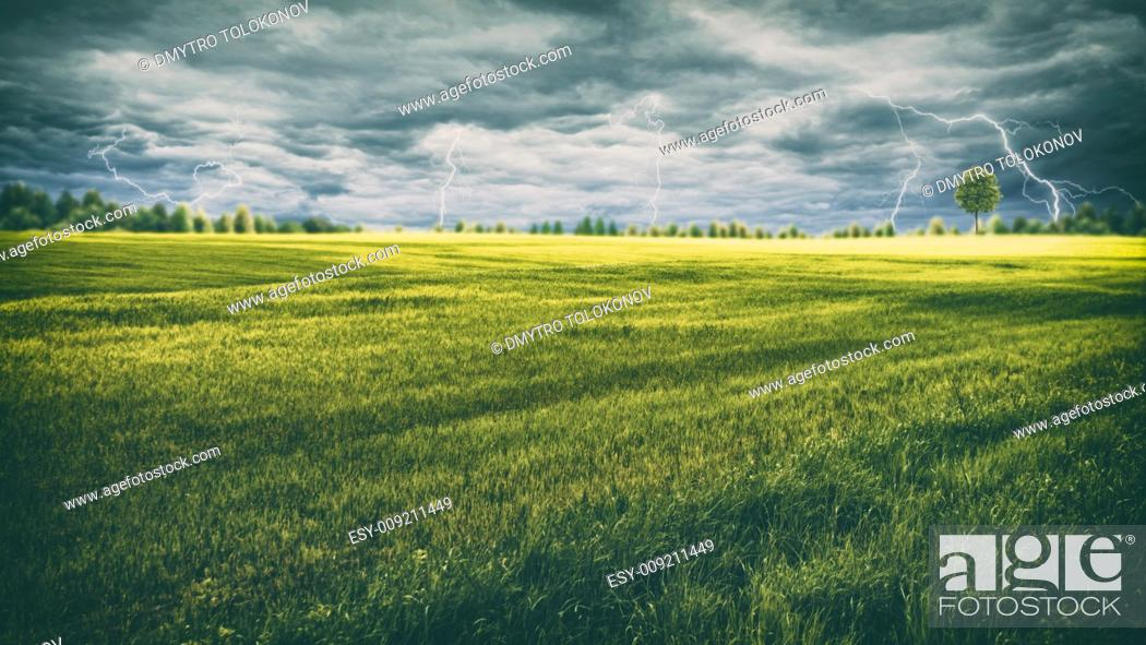 Stock Photo: Forces of nature, lighting on the meadow.