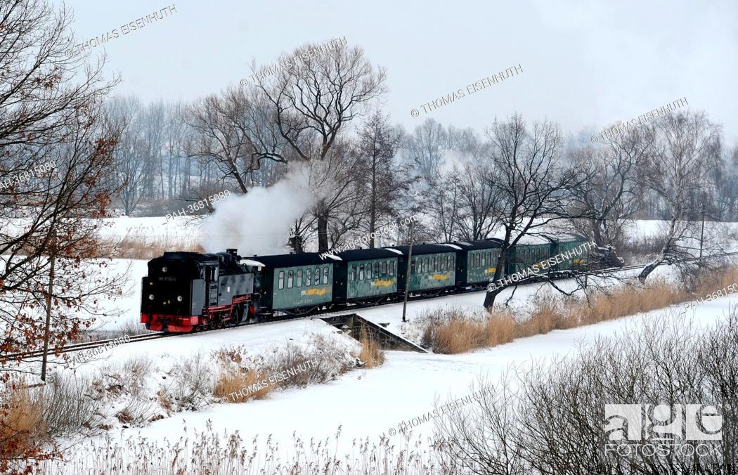 Stock Photo: The Loessnitzgrundbahn runs between Moritzburg and Friedewald on the Dippelsdorfer dam near Friedewald, Germany, 25 January 2013.
