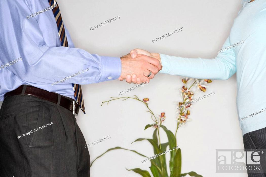 Stock Photo: Mid section view of a businessman and a businesswoman shaking their hands.