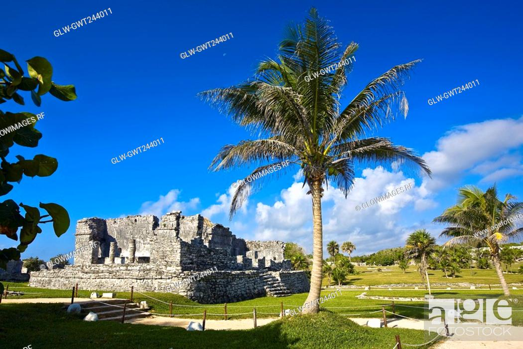 Stock Photo: Old ruins of a palace in a grassy field, Zona Arqueologica De Tulum, Cancun, Quintana Roo, Mexico.