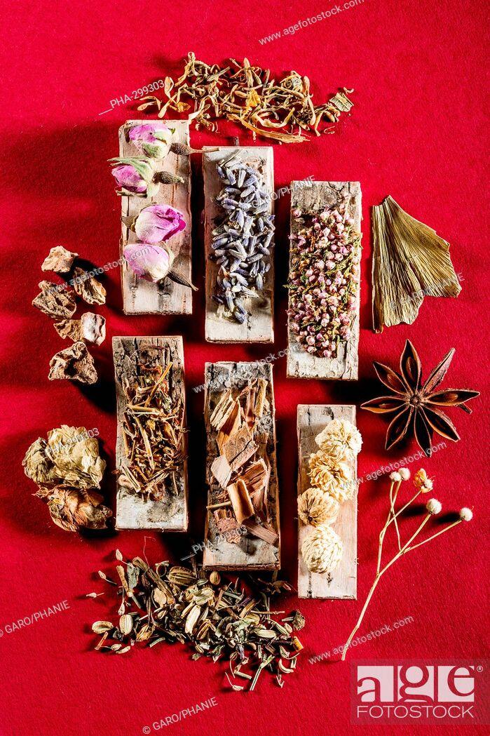 Photo de stock: Medicinal herbs, assortment of dried herbs.