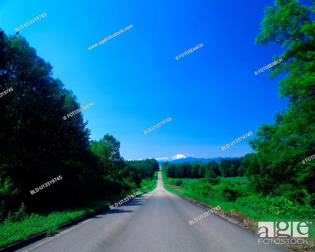 Stock Photo: Straight road.